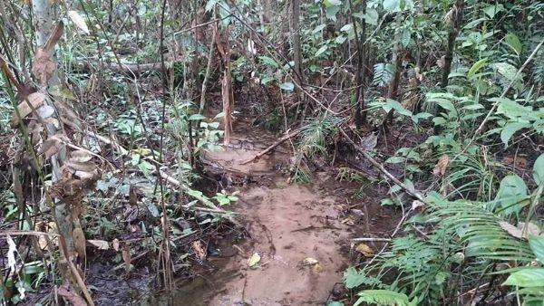 CAura habitat