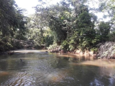 Río Dulce National Park